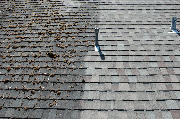 wash-safe-roof-before-and-after
